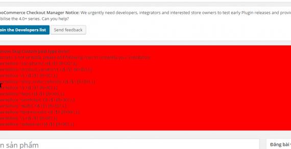 Hướng dẫn khắc phục lỗi Remove slug custom post type error!